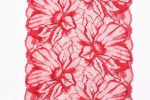 Phalaenopsis - florale transzendente Spitze